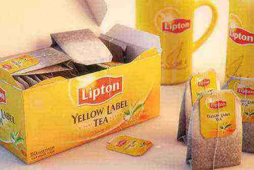 giá trà lipton túi lọc